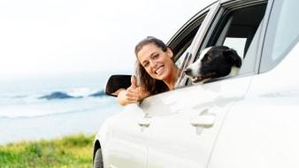 Begleitetes Fahren: Ab 16,5 Jahren dürfen Sie mit der Fahrschule beginnen.