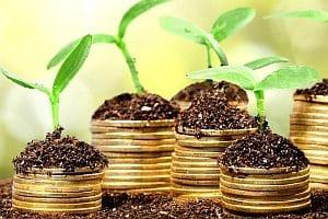 Gentechnik: Das Pro-Lager argumentiert, dass beim Anbau von Pflanzen Erträge gesteigert und Kosten gesenkt werden können.