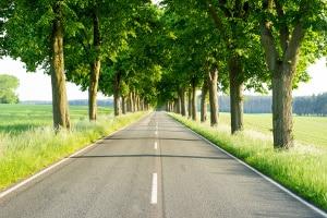 Die Geschwindigkeitsbegrenzung außerorts ist vom jeweiligen Kfz abhängig.