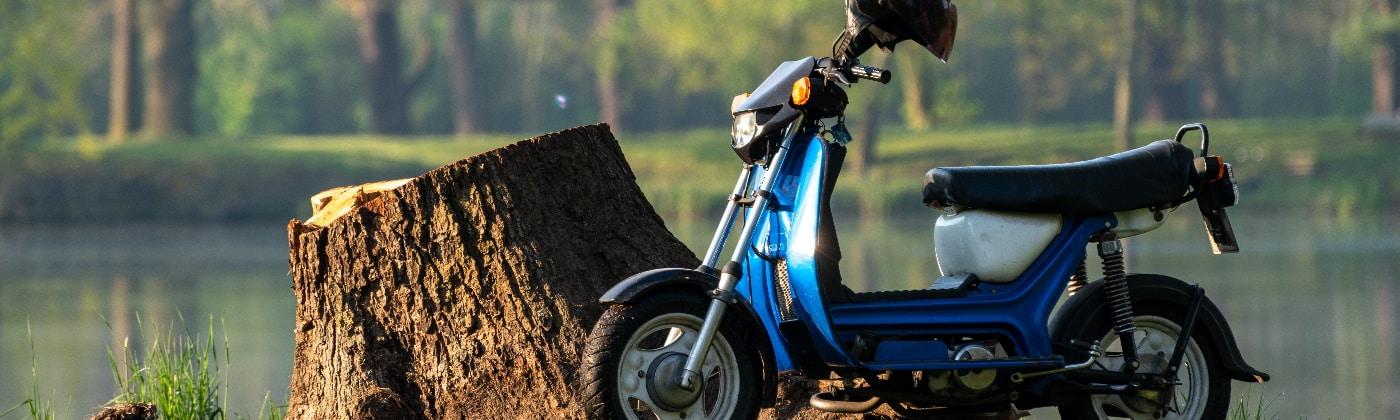 Header Moped