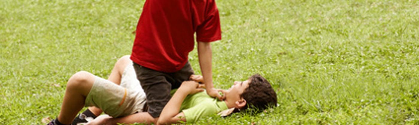 Vorsätzliche Einfache Körperverletzung Strafe