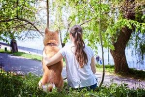 Hundegebell ist eine Ruhestörung, wenn sie als unzumutbar einzustufen ist.