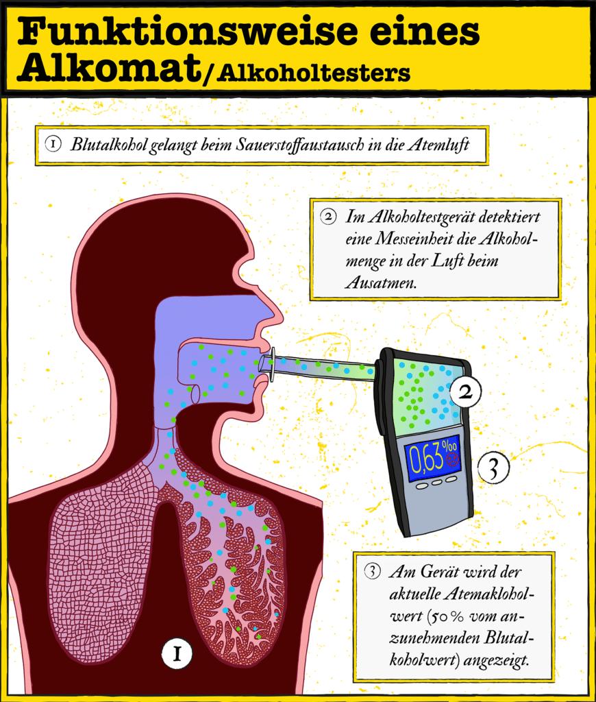 Infografik: Wie funktioniert ein Alkomat?