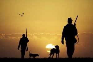 Jäger müssen keinen Waffenschein machen, um Waffen bei der Jagd zu führen. Ein Jagdschein reicht aus.