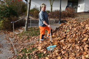 Wer muss sich im Herbst darum kümmern, das Laub zu entfernen?