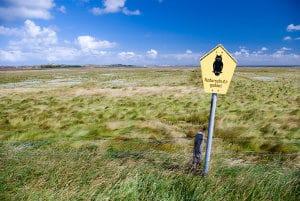 """Wollen Sie """"offroad"""" einen Unfall vermeiden, sollten Sie ein geeignetes Fahrzeug wählen."""