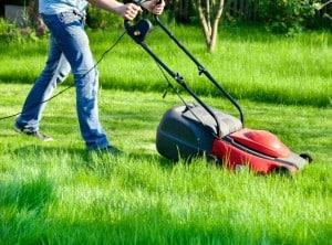 Infos über die Verordnung zum Rasenmäherlärm