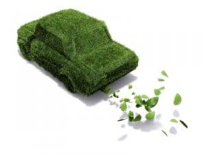 Umweltschutz trägt zu mehr Sauberkeit bei