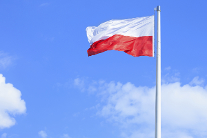 Was geschieht, wenn gegen die Verkehrsregeln in Polen verstoßen wird?