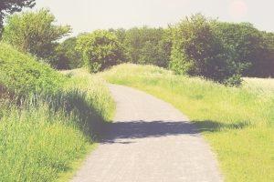 Was ist ein Wegerecht? Da der Begriff verschiedene Bedeutungen hat, kommt es auf den Zusammenhang an.