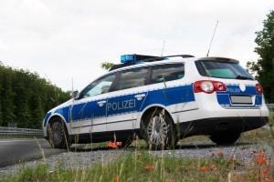 Bei einem Wildunfall besteht Meldepflicht - entweder bei der Polizei oder dem zuständigen Wildhüter bzw. Jagdaufseher.